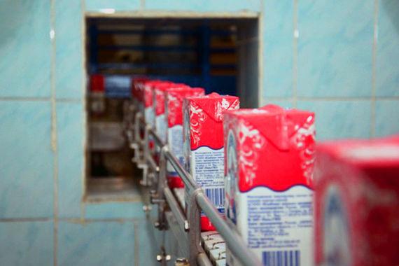 Покупатели молочных продуктов смогут с помощью смартфона проверить их подлинность