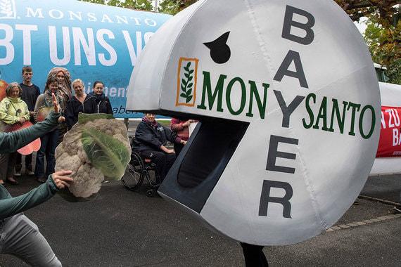 Bayer подал в суд на ФАС из-за сделки с Monsanto