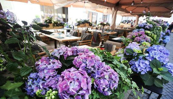 Рестораторы попросили Роспотребнадзор разрешить летние веранды
