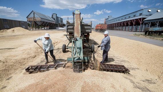 Машиностроители просят отложить ограничения по экспорту зерна