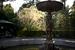 """Парки Сочи                                      Дендрарий (на фото) - один из самых крупных дендропарков страны. Ему более 120 лет. Если власти выполнят обещание и завалят Сочи снегом, можно будет полюбоваться на уникальное зрелище - пальмы и всякие экзотические для россиян деревья в мокром снегу.                                      Еще один парк - «Ривьера» - одно из самых популярных в Сочи мест. В парке много традиционных для ЦПКиО развлечений, но по-настоящему привлекает всякое """"старье"""": разваливающаяся сочинская дача Хлудова конца ХIХ в., старый розарий, советский фотоавтомат, в котором до недавнего времени можно было сделать моментальные снимки. На паспорт в автомате """"Ривьеры"""" никто никогда не фотографировался, а самые креативные снимки тут же вывешивались рядом.                                      Сад-музей """"Дерево дружбы"""" - дерево лимона с привитыми к нему ветками 45 видов и сортов цитрусовых. Когда в СССР приезжали с долгим визитом важные политические гости и общественные деятели (космонавты, дружественные режиму деятели искусств), их часто везли в Сочи. Был и обязательный пункт программы - привить ветку на дерево дружбы. На дереве было сделано более 600 прививок."""