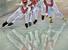 Российская сборная по конькобежному спорту