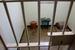 В молодости за активную борьбу с режимом апартеида Нельсон Мандела провел в тюрьме 27 лет. На фото: камера будущего президента