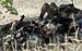 """Солдаты батальона """"Азов"""" отдыхают на контрольно-пропускном пункте в  Мариуполе"""