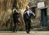 Сельскохозяйственная страна                                          По данным CIA Factbook, в сельском хозяйстве занято больше половины албанцев, при этом вклад сельского хозяйства в ВВП - немногим меньше 20%. Албанцы выращивают табак, сахарную свеклу, картофель, фрукты, разводят крупный рогатый скот и овец.