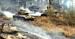 «Белый тигр» (2013).                               Фильм Карена Шахназарова также не прошел в шорт-лист. Статуэтка досталась фильму «Любовь» Михаэля Ханеке