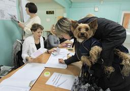 Людей на участках в Москве было меньше обычного