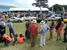 Зрители рассматривают автомобили-участники Concours d'Elegance 2014 в гольф-клубе Пеббл Бич (Pebble Beach), Монтерей, Калифорния, США