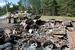 Уничтоженная бронетехника повстанцев на окраине Красного Лимана в Донецкой области