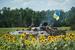 Украинская БМП в районе села Кривая Лука