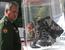 """Министр обороны РФ Сергей Шойгу на выставке """"День инноваций министерства обороны РФ"""""""