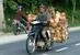 Индонезия                                      Экономический бум в Индонезии сделал мотоциклы и скутеры средством передвижения, доступным для миллионов. Если в 2000 г. в стране было продано менее 1 млн мотоциклов, то в 2011 г. – уже более 8 млн, три четверти из них продавались в кредит, зачастую без первоначального взноса.