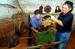 Март 2006 г. Вина из Грузии и Молдавии                                                              Роспотребнадзор обнаружил в грузинском и молдавском вине тяжелые металлы и пестициды. Поставки молдавского вина возобновились ноябре 2007 г., но в сентябре 2013 г. снова были остановлены по требованию Росприроднадзора. Продукция грузинских виноделов вышла из-под запрета в июне 2013 г.