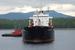 На порт Витино есть и другие претенденты,                    кроме «БТА банка»