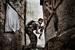 Фабио Буциарелли, Италия, Агентство France-Presse                                          0 октября 2012, Алеппо, Сирия                     Боец Свободной армии Сирии занимает позицию во время столкновений с правительственными войсками в районе Сулейман Халаби.                      Город Алеппо, торгово-экономический центр Сирии, стал ареной самых кровопролитных столкновений в ходе продолжающихся выступлений против режима президента Башара Асада. И правительство, и оппозиционные силы считают стратегически важным контролировать Алеппо. В июле Сирийская свободная армия (Free Syrian Army, FSA) впервые захватила часть города. В течение следующих месяцев правительственные войска с переменным успехом пытались вернуть эти территории. К концу года сирийскими правительственными войсками был занят западный сегмент города, а повстанцы закрепились в большинстве его восточных и южных районов. Несколько раз центром самых ожесточенных боев становился Старый город и прилегающие к нему территории.