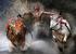 Вей Сенг Чен, Малазия                                          Гонка на быках Паку Джави, Индонезия                     12 февраяля 2012, Бату Сангкар, Западная Суматра, Индонезия                     Наездник на своей упряжке пересекает финишную черту в гонке на быках в Бату-Сангкар в провинции Западная Суматра (Индонезия). Гонки на быках паку джави в этом регионе – древняя традиция, которой уже больше 400 лет, они проводятся на рисовых полях после сбора урожая. Босые наездники правят двумя быками в деревянной упряжи, держась только за хвосты животных. Побеждает тот, кто лучше прoведет быков по прямой линии к финишу и у кого животные лучше работают в одной упряжке. В нескольких гонках паку джави, которые проводились в феврале, приняли участие в общей сложности около 600 быков                      и 50 фермеров.
