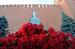 Цветы у памятника на могиле И.В.Сталина у Кремлевской стены