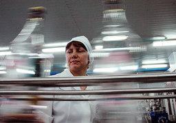 Производители легальной водки пережили повышение акциза