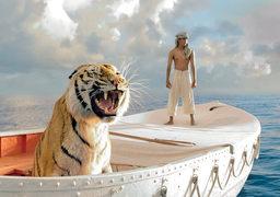 """Самая расхожая шутка про фильм - что тигру надо дать актерский """"Оскар"""""""