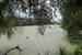 """У знаменитых Шереметевских прудов теперь московская прописка, только столичного лоска их новый владелец - ВТБ - пока не навел. Еще в прошлом году здесь плескалась рыба, рассказывает Владимир Горелов, но весной из-за загрязнения воды она погибла. Источник вредных сбросов - поселок """"Сосны"""" и находящийся в нем Рублево-Успенский лечебно-оздоровительный комплекс Управления делами президента, уверен местный житель. Местные чиновники в курсе проблемы. """"После недавнего сброса в пруд на место незамедлительно прибыли сотрудники администрации, представители Роспотребнадзора и полиции, - уверяет глава администрации СП """"Успенское"""" Александр Смирнов (полностью интервью с ним можно прочитать здесь). - В настоящее время Роспотребнадзором и другими службами проводится проверка, а мы уже предложили передать очистные сооружения в муниципальную собственность, для того чтобы мы могли на законных основаниях провести их реконструкцию и заниматься обслуживанием""""."""