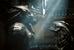«Чужой против Хищника» Пола Андерсона (2004)                                      Перемещение Чужих в пространство комикса и компьютерной игры, осуществленное создателем «Обители зла» и «Смертельной битвы». Чужие вновь обретают звериную суть и опять выступают единым фронтом, расой — против расы. На сей раз их противниками оказываются герои другой культовой картины, Хищники. Именно они в конечном счете становятся союзниками человечества в межпланетной войне. «Чужой против Хищника» был заслуженно номинирован на «Золотую малину» в категории «Худший ремейк/сиквел» и не считается официальным продолжением серии картин о Чужих, хотя со временем получил собственный сиквел.