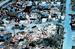 4. Ураган Andrew, 1992 г. (Флорида, Луизиана)                                      Давление: 922 мбар                     Жертвы: 26 человек от удара, 39 от последствий                   Ураган Эндрю вызвал значительные разрушения, оценка убытка составила от 26,5 до 34 млрд долларов США по ценам 1992 г., в основном во Флориде.