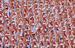3 июля 2013 г.                                          Спортивно-молодежное шествие во время парада в честь Дня Независимости Беларуссии в Минске.