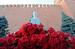 5 марта 2013 г.                                          60-ая годовщина со дня смерти Сталина                     Смотрите галерею на Vedomosti.ru