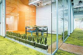 Удачный растительный декор способен сформировать мнение посетителей о бизнес-центре, создать «правильную» деловую атмосферу