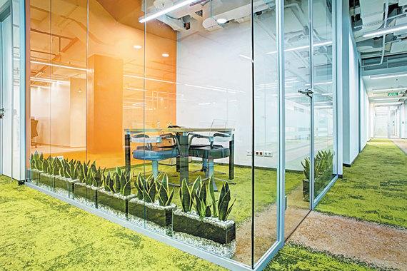 normal 157y Озеленение – бюджетный способ провести реконструкцию офиса