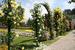 Розовый сад Parco Rose