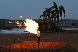 Многие нефтепроизводители не желают сокращать добычу и вступили в борьбу за долю рынка с ОПЕК
