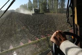 Минсельхоз предлагает субсидировать проценты по кредитам сельхозпроизводителей авансом