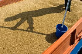 Экспортеры зерна боятся непрогнозируемых убытков, если новая пошлина не будет пересмотрена