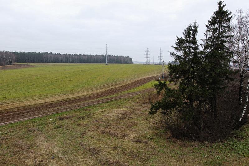 Сельхозземли АСВ подмосковные власти обнаружили, когда начали тотальную проверку целевого использования земель