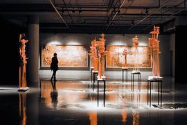 Экспозиция бельгийского художника Арне Куинза в МФК «Город столиц»