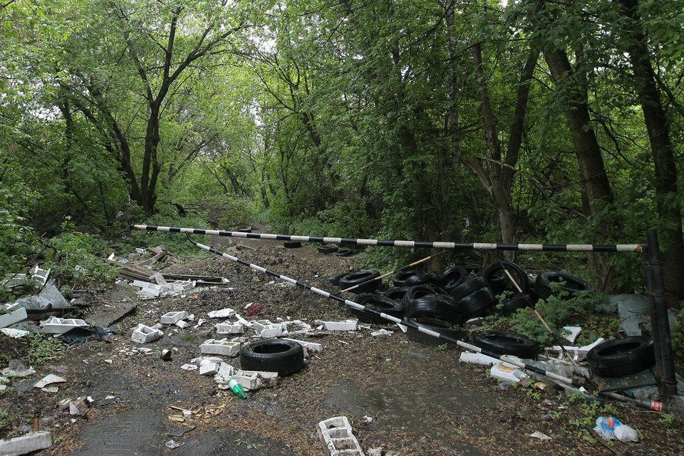 Очистка леса от захламления должна производиться за счет нарушителя