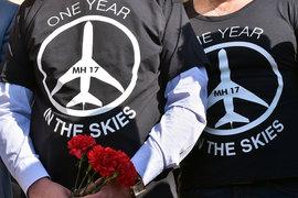 С момента гибели MH17 прошел год, но официальная причина катастрофы не установлена