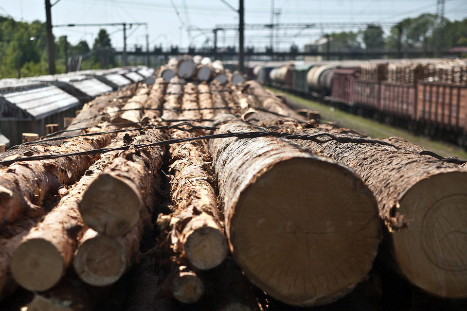 ФАС следит за равнодоходностью экспорта обрабатывающей продукции, чтобы цены не отличались от внутренних