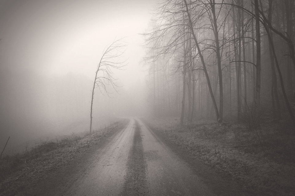 Проект сочинения «Стратегии-2030» выглядит лучом надежды на светлое будущее в тумане все теснее подступающего к нам прошлого