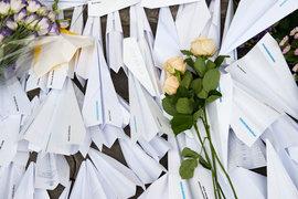 Лайнер Boeing 777 авиакомпании Malaysia Airlines, выполнявший рейс MH17 (из Амстердама в Куала-Лумпур), потерпел крушение год назад – 17 июля 2014 г.