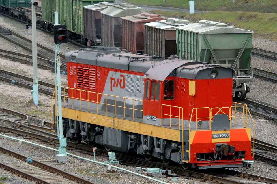 РЖД закупает дизтопливо в основном для заправки локомотивов