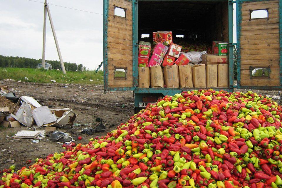 По информации Россельхознадзора, за неделю было уничтожено почти 500 т продуктов
