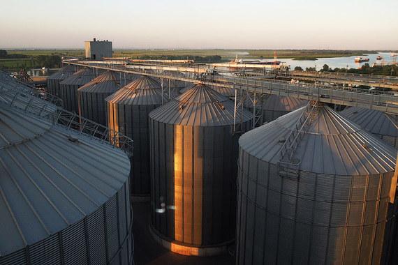Как торговец с рынка стал крупнейшим экспортером российского зерна