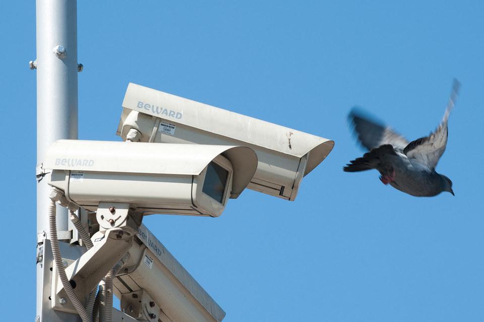 Операторы видеонаблюдения недополучили от Москвы более 5% от сумм госконтрактов