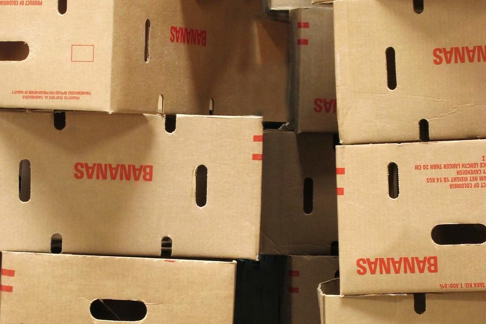 Наркотики были обнаружены в контейнере для бананов, экспортируемых компанией Exbafrut