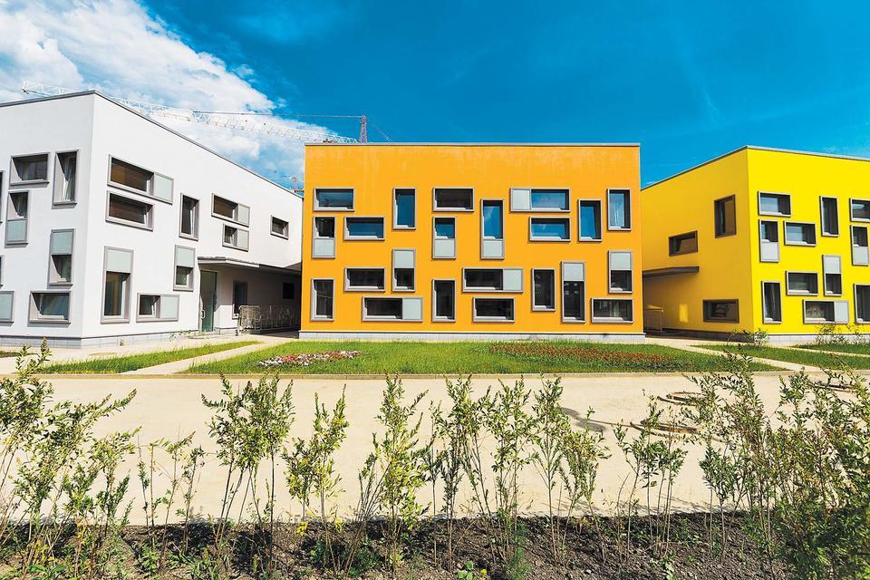 Детский сад и школу в ЖК «Микрогород «В лесу» проектировало бюро Speech