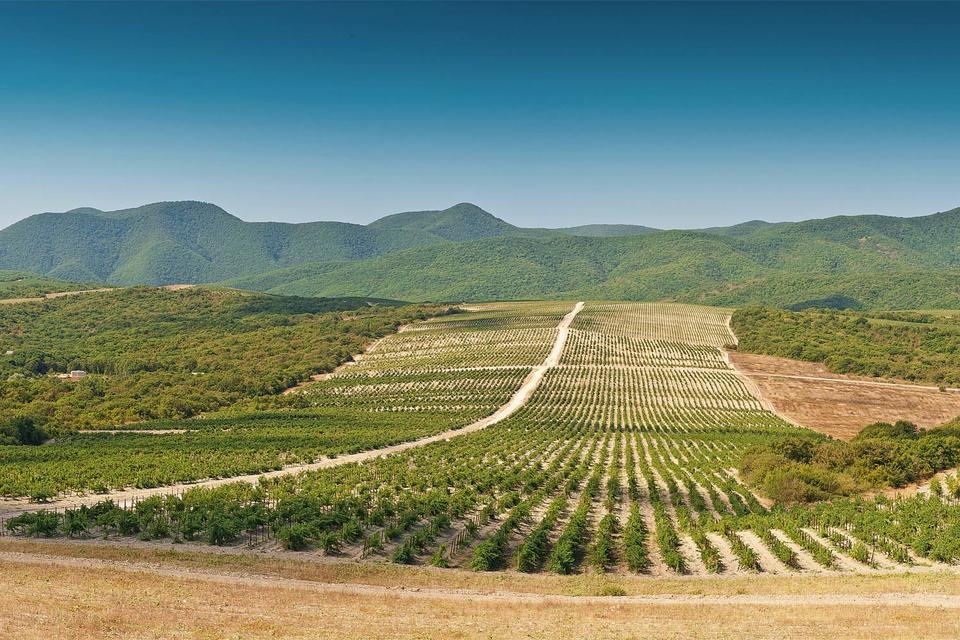 Абрау-Дюрсо уже давно и успешно принимает посетителей, но полноценный центр винного туризма открыл совсем недавно