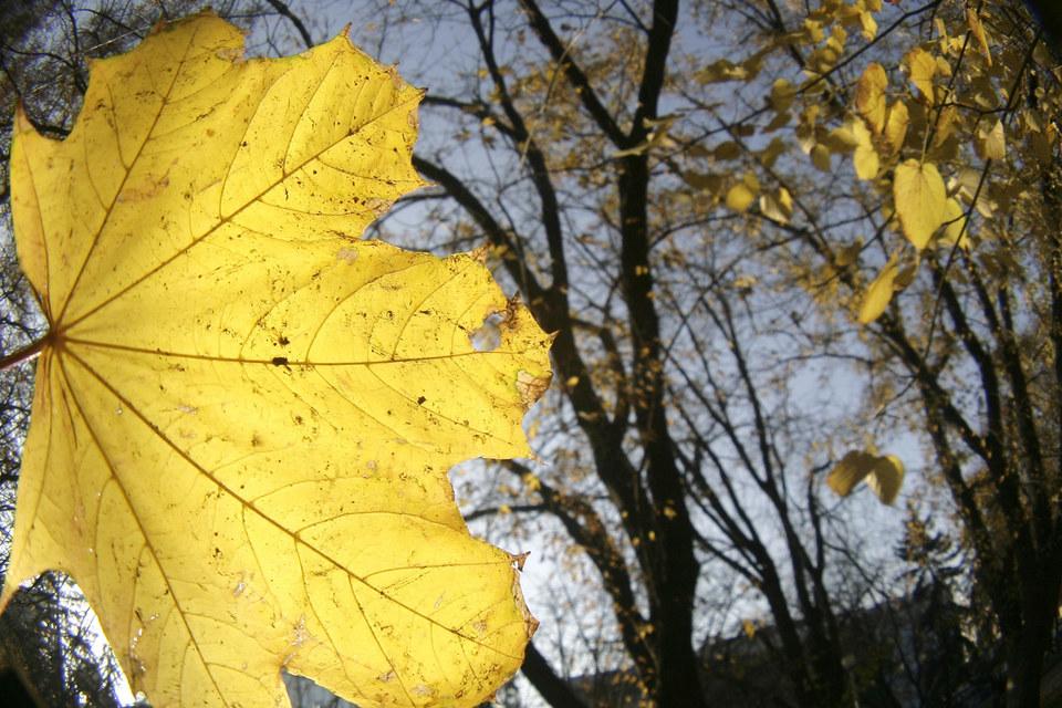 Октябрь традиционно богат на события, заставлявшие инвесторов нервничать