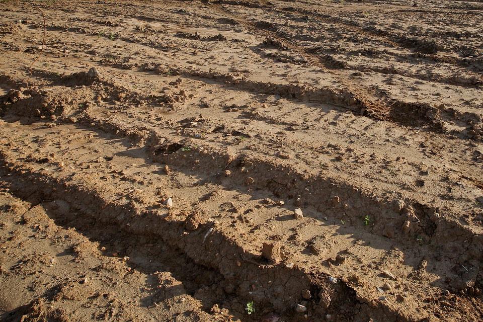 По словам представителя администрации, в последние годы из земель, переведенных под жилую застройку, 2/3 составляют земли сельхозназначения
